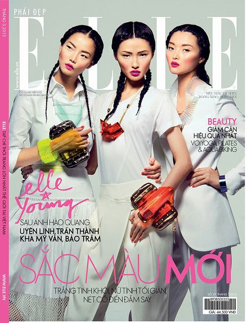 0-JAY_SHIN_WANG_XIAO_SUNG_HEE_ELLE_VIETNAM_MARCH_2013-COVER